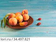 Несколько персиков в тарелке на синем деревянном столе. Свободное место для текста. Стоковое фото, фотограф Наталья Гармашева / Фотобанк Лори