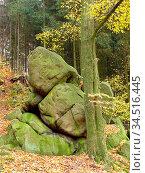 Fels, felsen, odenwald, sandstein, sandsteinfelsen, natur, landschaft... Стоковое фото, фотограф Zoonar.com/Volker Rauch / easy Fotostock / Фотобанк Лори