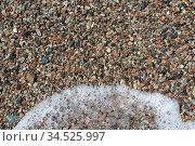 Sea shells background natural background. Стоковое фото, фотограф Zoonar.com/Alexander Strela / easy Fotostock / Фотобанк Лори