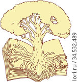 Drawing sketch style illustration of an oak tree rooted on book set... Стоковое фото, фотограф Zoonar.com/patrimonio designs limited / easy Fotostock / Фотобанк Лори