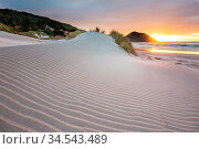 Sand dune at Pacific ocean beach, New Zealand. Стоковое фото, фотограф Zoonar.com/Galyna Andrushko / easy Fotostock / Фотобанк Лори
