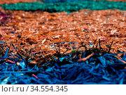Textured background decorative colored sawdust for finishing flower... Стоковое фото, фотограф Zoonar.com/Ian Iankovskii / easy Fotostock / Фотобанк Лори