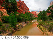 Beautiful river in Zion canyon. Utah. USA. Стоковое фото, фотограф Zoonar.com/Dmitry Kushch / age Fotostock / Фотобанк Лори