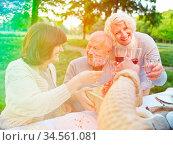 Gruppe Senioren feiert glücklich Geburtstag mit Geschenk im Garten. Стоковое фото, фотограф Zoonar.com/Robert Kneschke / age Fotostock / Фотобанк Лори