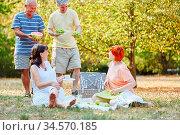 Glückliche Gruppe Senioren macht ein Picknick mit Obst im Garten. Стоковое фото, фотограф Zoonar.com/Robert Kneschke / age Fotostock / Фотобанк Лори