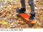 A boy skating in an autumn park. Стоковое фото, фотограф Nataliia Zhekova / Фотобанк Лори