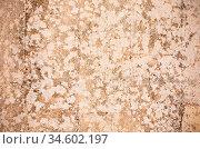 Grunge wall, highly detailed textured background. Стоковое фото, фотограф Zoonar.com/Konstantin Kalishko / easy Fotostock / Фотобанк Лори