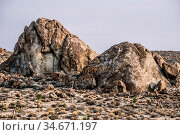 Death valley national park in california usa. Стоковое фото, фотограф Zoonar.com/Alex Grichenko / age Fotostock / Фотобанк Лори