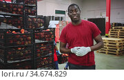 Confident african american loader carrying box with fresh peaches at the sorting and packaging factory. Стоковое видео, видеограф Яков Филимонов / Фотобанк Лори