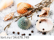 Still life with seashells, coarse grained Sea Salt and peppercorns... Стоковое фото, фотограф Zoonar.com/Valery Voennyy / easy Fotostock / Фотобанк Лори