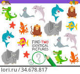 Cartoon Illustration of Finding Two Identical Pictures Educational... Стоковое фото, фотограф Zoonar.com/Igor Zakowski / easy Fotostock / Фотобанк Лори