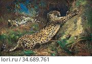 Swan Cuthbert Edmund - Contentment - Leopards - British School - ... Стоковое фото, фотограф Artepics / age Fotostock / Фотобанк Лори