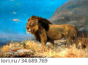 Swan Cuthbert Edmund - Study of a Lion - British School - 19th Century... Стоковое фото, фотограф Artepics / age Fotostock / Фотобанк Лори