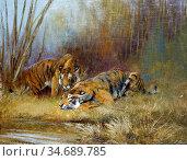Swan Cuthbert Edmund - Tigers by a Watering Hole - British School... Стоковое фото, фотограф Artepics / age Fotostock / Фотобанк Лори