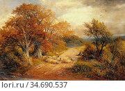Turner George - a Derbyshire Water Lane - British School - 19th Century... Стоковое фото, фотограф Artepics / age Fotostock / Фотобанк Лори