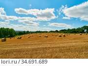 Feld mit Weizen und Heuballen nach der Ernte im Sommer vor einem ... Стоковое фото, фотограф Zoonar.com/Robert Kneschke / age Fotostock / Фотобанк Лори