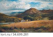 Leader Benjamin Williams - a Barley Field near Capel Curig North ... Редакционное фото, фотограф Artepics / age Fotostock / Фотобанк Лори