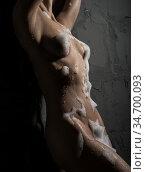 Gorgeous sexy girl in foam in studio aquazone. Стоковое фото, фотограф Гурьянов Андрей / Фотобанк Лори