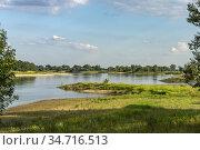 Die Elbe bei Buch, Ortsteil von Tangermünde, Sachsen-Anhalt, Deutschland... Стоковое фото, фотограф Peter Schickert / age Fotostock / Фотобанк Лори
