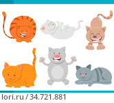 Cartoon Illustration of Cats or Kittens Funny Characters Set. Стоковое фото, фотограф Zoonar.com/Igor Zakowski / easy Fotostock / Фотобанк Лори