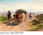 Bonheur Rosa - Charrette Attelée De Vaches Et Bouvier En Auvergne... Стоковое фото, фотограф Artepics / age Fotostock / Фотобанк Лори