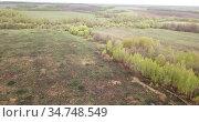 Panoramic view of meadows and Fields of Central Russia on may gloomy day. Стоковое видео, видеограф Яков Филимонов / Фотобанк Лори