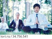 Business people practicing yoga in park. Стоковое фото, фотограф Zoonar.com/Tatiana Badaeva / easy Fotostock / Фотобанк Лори