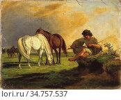 Lotz Károly - Stud Resting - Hungarian School - 19th Century. Стоковое фото, фотограф Artepics / age Fotostock / Фотобанк Лори