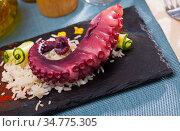 Seafood lunch. Tasty octopus tentacles with rice closeup. Стоковое фото, фотограф Яков Филимонов / Фотобанк Лори