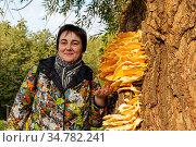 Женщина показывае на гриб трутовик серно-желтый (Laetiporus sulphureus) Стоковое фото, фотограф Александр Щепин / Фотобанк Лори