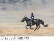 Young Kazakh horse racer at the Eagle Hunters festival near Ulgii Western Mongolia. Стоковое фото, фотограф Jeff Foott / Nature Picture Library / Фотобанк Лори
