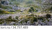 Green rocky mountain plateau in sunbeams. Стоковое фото, фотограф Евгений Харитонов / Фотобанк Лори