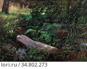 Dahl Johan Christian Clausen - the Grosser Garten Dresden (Study) - ... Редакционное фото, фотограф Artepics / age Fotostock / Фотобанк Лори
