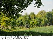 Weg, baum,traktor, trekker, alt, landwirtschaft, feld, felder, natur... Стоковое фото, фотограф Zoonar.com/Volker Rauch / easy Fotostock / Фотобанк Лори
