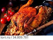 Grilled spicy chicken with barley groats and mushrooms. Стоковое фото, фотограф Zoonar.com/Darius Dzinnik / easy Fotostock / Фотобанк Лори