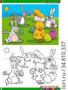 Cartoon Illustrations of Easter Bunnies and Chicks Holiday Characters... Стоковое фото, фотограф Zoonar.com/Igor Zakowski / easy Fotostock / Фотобанк Лори
