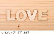 Begriff aus Holzbuchstaben auf hellem Holz - Term from wooden letters... Стоковое фото, фотограф Zoonar.com/lantapix / easy Fotostock / Фотобанк Лори