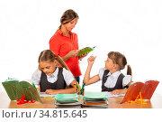 The teacher helps the schoolgirl to understand the task. Стоковое фото, фотограф Zoonar.com/Ivanov Aleksey y / easy Fotostock / Фотобанк Лори