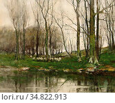 Gruppe Charles Paul - View of the Haagse Bos with Grazing Sheep - ... Редакционное фото, фотограф Artepics / age Fotostock / Фотобанк Лори