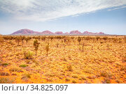 An image of a landscape scenery of the Australia outback. Стоковое фото, фотограф Zoonar.com/magann / easy Fotostock / Фотобанк Лори