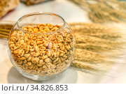 Honey wheat is poured into a round glass bowl. Стоковое фото, фотограф Андрей Радченко / Фотобанк Лори