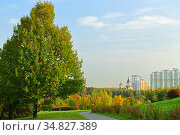 Golden autumn. Landscape park in background of residential area. Moscow, Russia. Стоковое фото, фотограф Валерия Попова / Фотобанк Лори