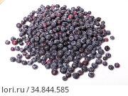 Blueberry or bilberry isolated on white background cutout. Стоковое фото, фотограф Яков Филимонов / Фотобанк Лори