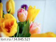 fresh bouquet of colorful flowers - beautiful tulips. Стоковое фото, фотограф Анна Гучек / Фотобанк Лори
