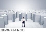 Businessman choosing between entrances in a middle of a maze. Стоковое фото, фотограф Zoonar.com/ranczandras / easy Fotostock / Фотобанк Лори
