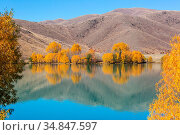 Autumn season in New Zealand mountains. Стоковое фото, фотограф Zoonar.com/Galyna Andrushko / easy Fotostock / Фотобанк Лори