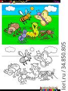 Cartoon Illustration of Funny Insects Animal Characters Coloring Book... Стоковое фото, фотограф Zoonar.com/Igor Zakowski / easy Fotostock / Фотобанк Лори