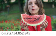 Beautiful woman in red shirt with short hair sitting outdoors on red flowers background and eating a piece of watermelon. Picnic in the city. Стоковое видео, видеограф Ольга Балынская / Фотобанк Лори