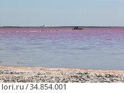 Розовое озеро Сасык-Сиваш у города Евпатории, Крым. Стоковое фото, фотограф Николай Мухорин / Фотобанк Лори