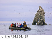 Ecotourists view a seabird colony on off-shore rocks in the Bering Sea near Verkhoturova Island, Russia. The nesting species include common and Brunnich... Стоковое фото, фотограф Jenny E. Ross / Nature Picture Library / Фотобанк Лори